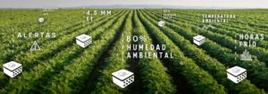 agricultura-de-precision-qampo-1
